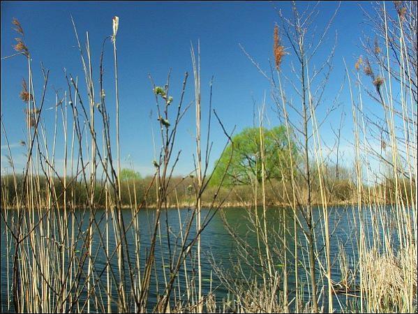 jezioro nury