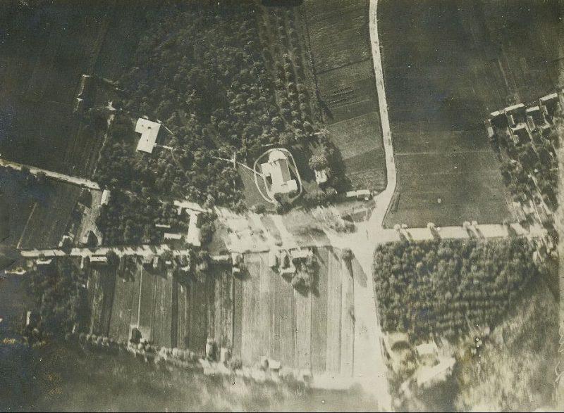 Gołąb II WW (1)